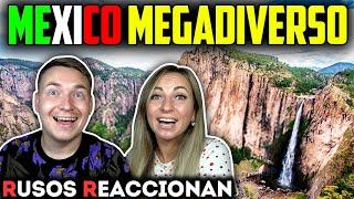 🇲🇽MÉXICO es EL PAÍS MÁS HERMOSO del MUNDO | 🇷🇺RUSOS REACCIONAN a MÉXICO MEGADIVERSO