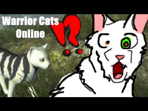 Warriors Cats Video Game Online