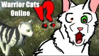 Lets Play | Warrior Cats Online- ChirpChirpChirp SHUT UP!