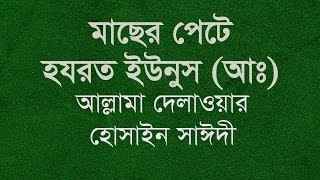 Saidi waz | মাছের পেটে হযরত ইউনুস (আঃ) | Delwor Hossain Sayeedi | Bangla waz mahfil
