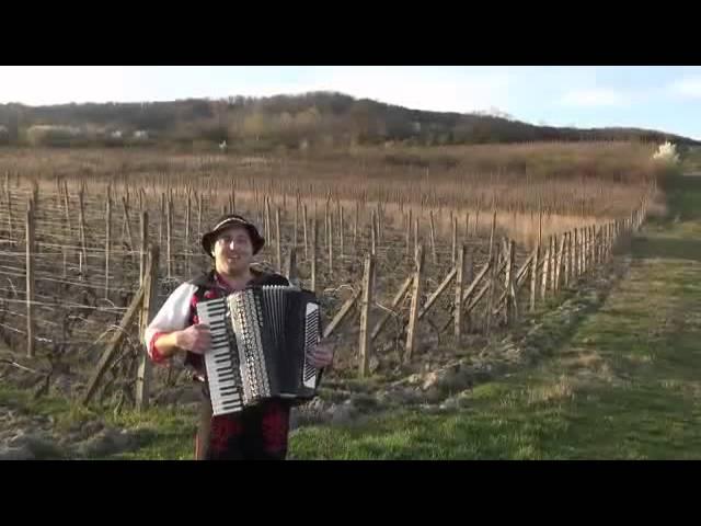 V Hruškovci na kopci - harmonikár Milan Perný
