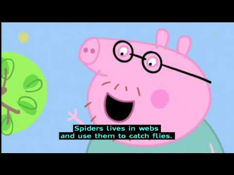 Peppa Pig Series 4  Spider Web with subtitles