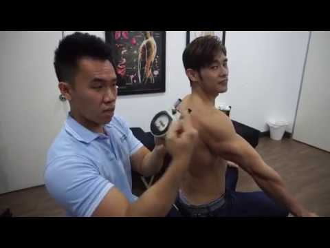 "Part 1: Gonstead Chiropractic for ""Wellness Care"""