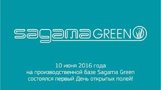 Sagama Green - рулонный газон от производителя. День открытых полей.(, 2016-06-16T11:51:47.000Z)