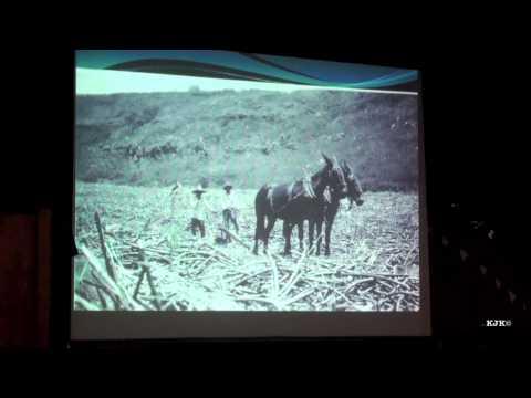 John Clark Oahu Surf Stories
