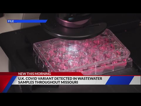 U.K. COVID variant found in 13 wastewater systems across Missouri: I'm From Saint Louis