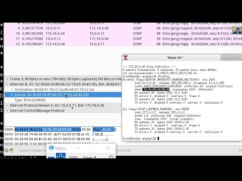 4 1 2 10 Lab - Introduction to Wireshark - Смотреть видео онлайн