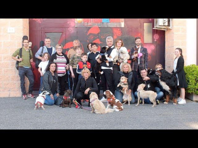 Animal Aid Italia 'Estate Perfetta'