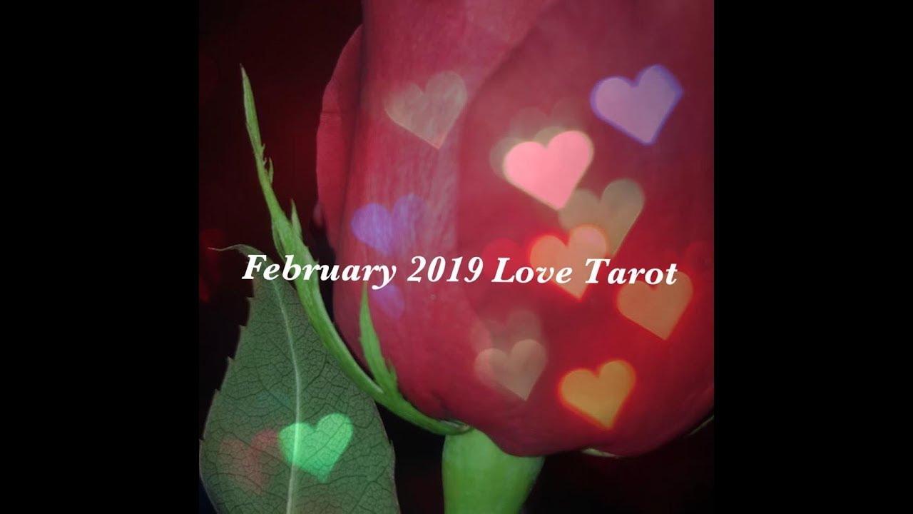 virgo february love tarot