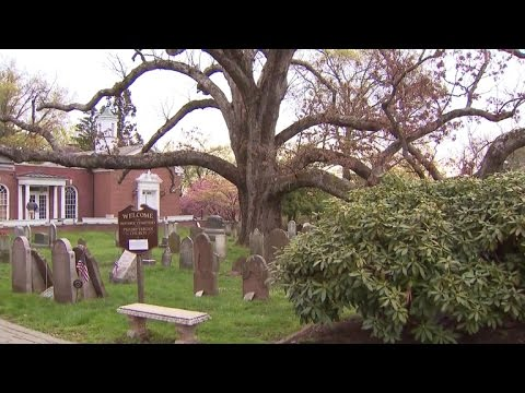 New Jersey community says goodbye to historic white oak tree