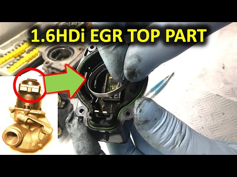 How to assemble the electronic part of an EGR valve (Peugeot/Citroen 1.6HDi)