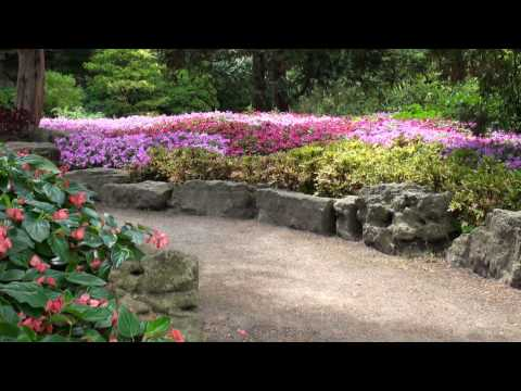 Best views of Rock Garden @ RBG (Royal Botanical Gardens in Burlington, ON)
