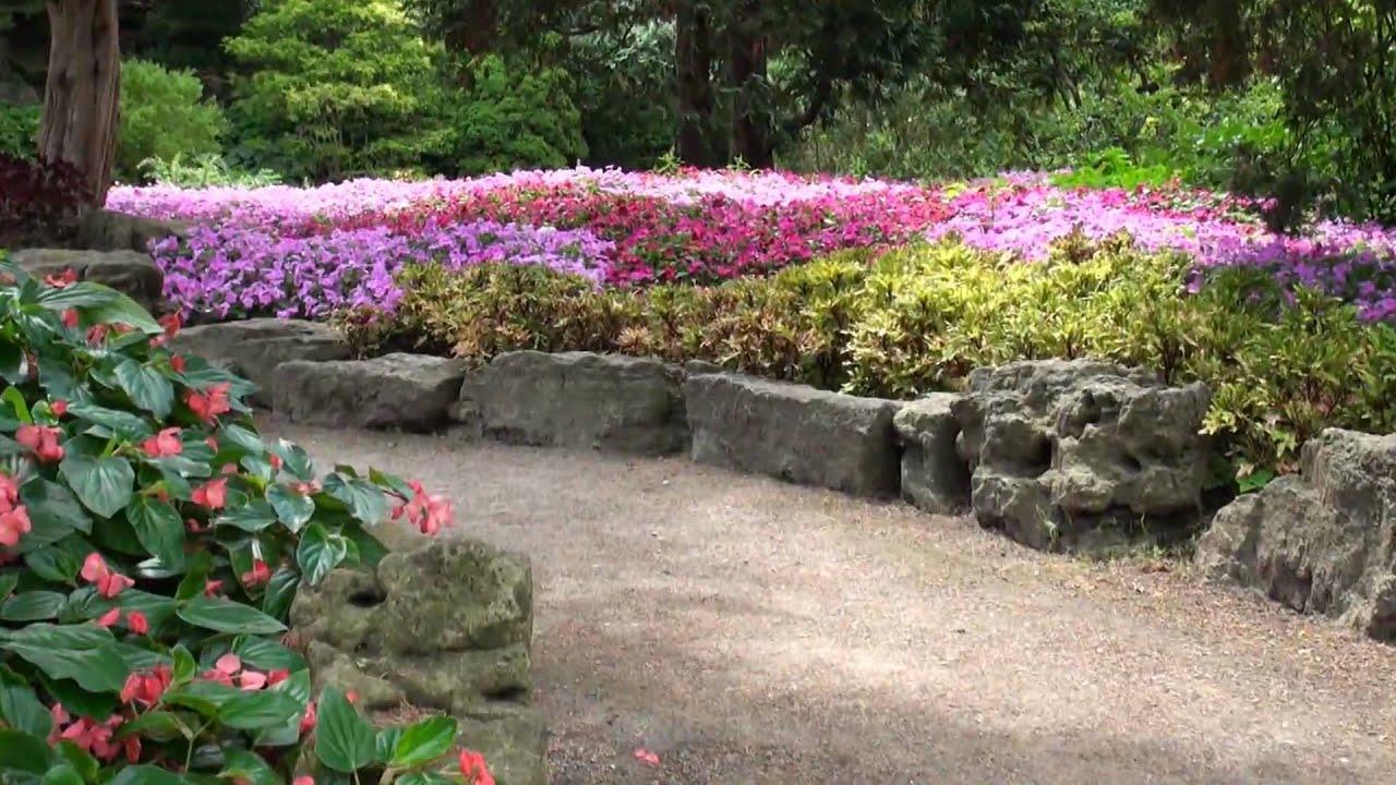 Fresh New Fall Hd Wallpapers Best Views Of Rock Garden Rbg Royal Botanical Gardens