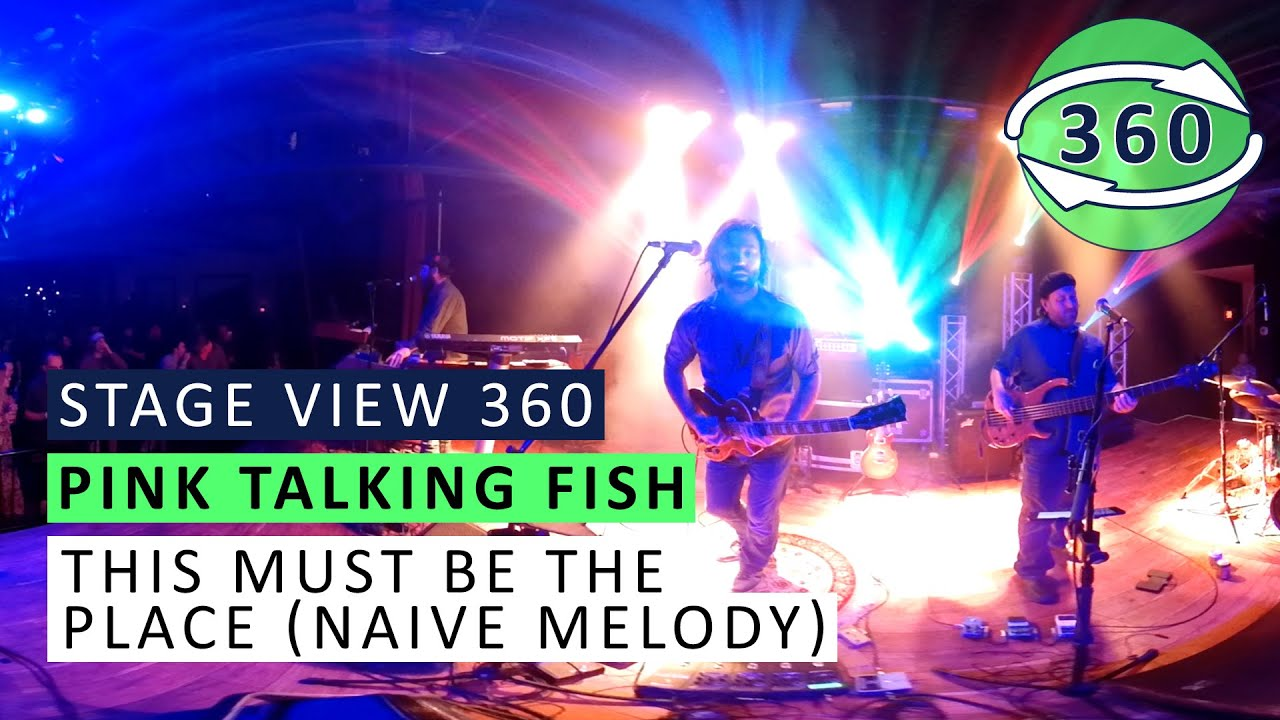 pink talking fish this must be the place naive melody 360 live youtube. Black Bedroom Furniture Sets. Home Design Ideas