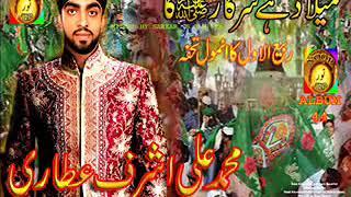 New 2011 mp3 Audio & Video Naat collection SARKAR AA GAY HAIN byBest of Muhammad Ali Ashraf Attari