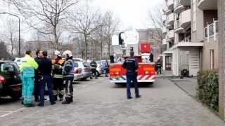 31-03 Rookbom in flat Paganinistraat