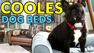 The Absolute Coolest Dog Beds