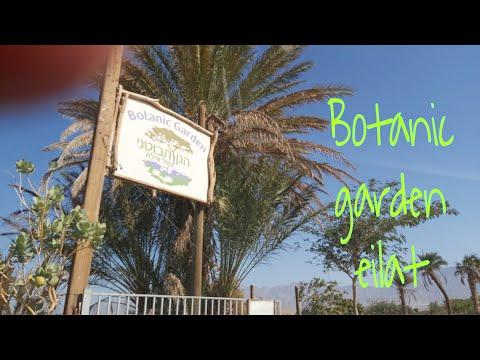 Botanical Garden, Eilat Israel, Eilat, אילת