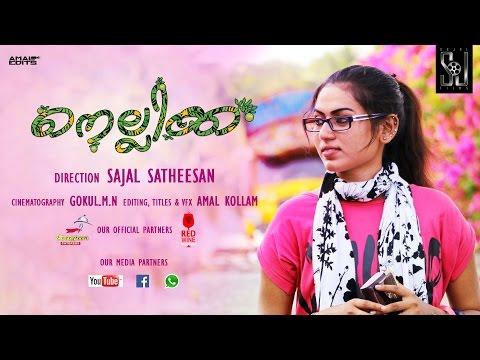 Nellikka Malayalam Short Film 2016