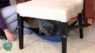 Cat Crib Cat Hammock Demonstration