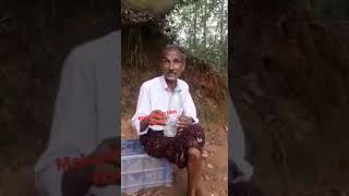 Malayalam Edit