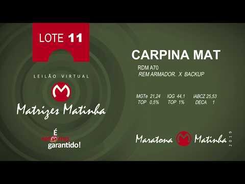 LOTE 11 Matrizes Matinha 2019