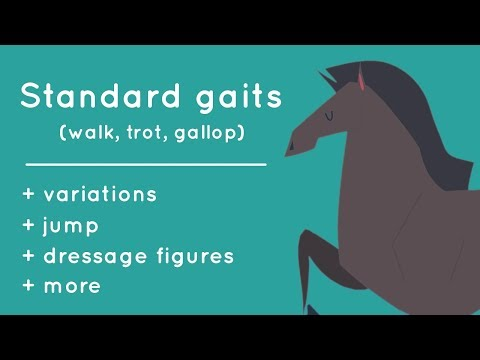 Every Gait of a Horse, Animated