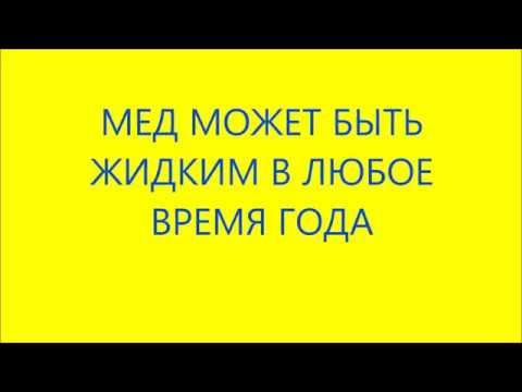 Жидкий мед круглый год. Башкирия. Ufamedok.ru