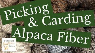 Picking & Carding Alpaca Fiber (Fleece)
