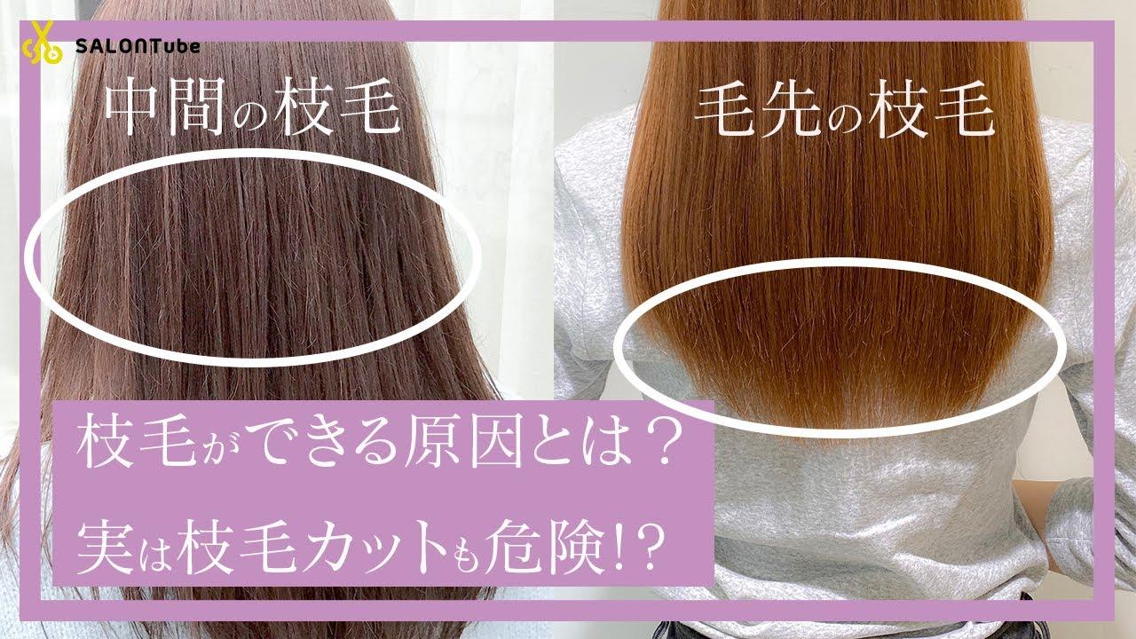 毛 カッター 枝
