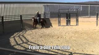 Starting a lazy horse under saddle