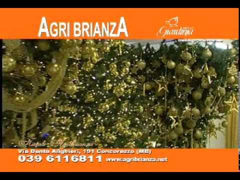 Natale agri brianza 2010 youtube for Agri brianza natale