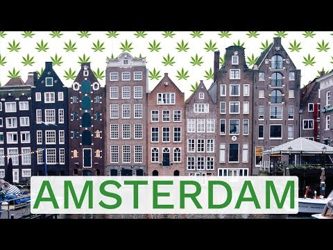 3 BEST Things to do when you VISIT AMSTERDAM!