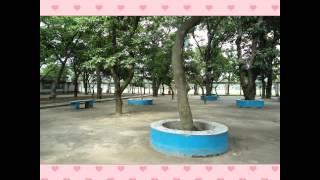 ssc batch 2016 baf shaheen college tejgaon dhaka