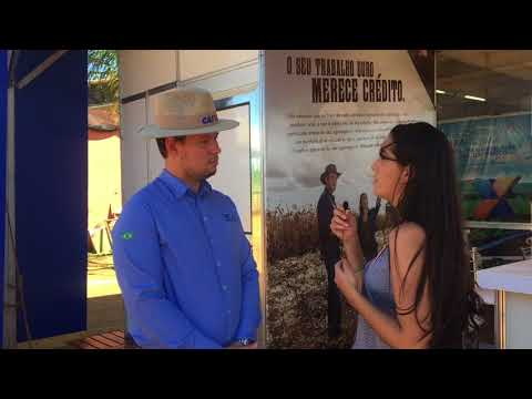Entrevista Gerente de Agronegócio da CAIXA de MS, Everton Ferreira