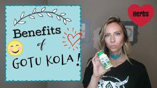 HERBS: Benefits of Gotu Kola (Circulation, Insomnia & More!)