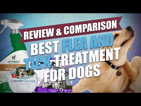 Best Flea and Tick Treatment for Dogs Comparison (2018)