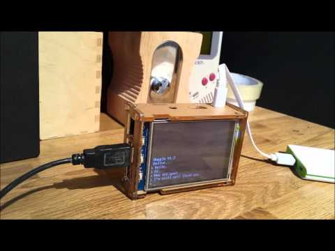 Woggle - The Raspberry Pi AI