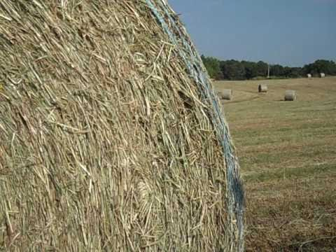 The Baler Rolls - a song about baling hay