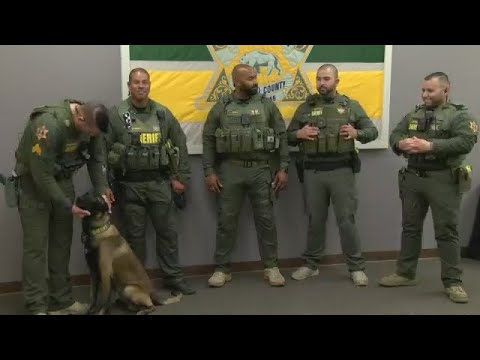 Merced County Sheriff's new S.T.A.R. team to hit the streets in September