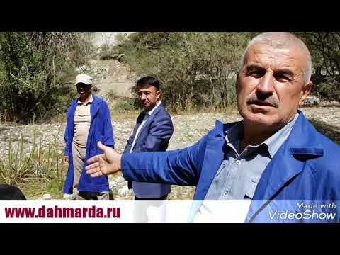 видео: Рабочая версия интервью сотрудника института животноводства Сельхозакадемии Таджикистана Бобокалонов