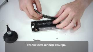 Полный разбор iPhone 5s. Full disassembly iPhone 5s.(, 2014-08-18T14:17:08.000Z)