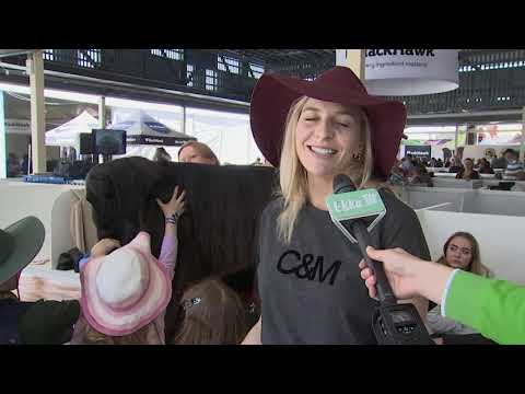 Ekka TV What's New At Show