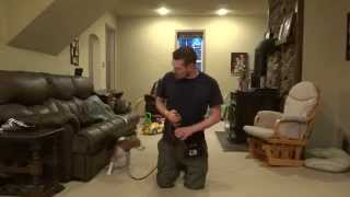 Initial Intro To E-collar - Dog Psychology And Training Center