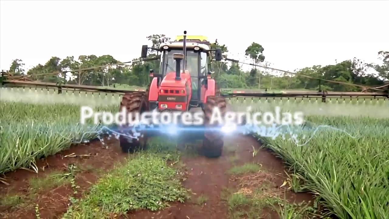 Revista El Jornalero, el mejor medio agrícola de México.