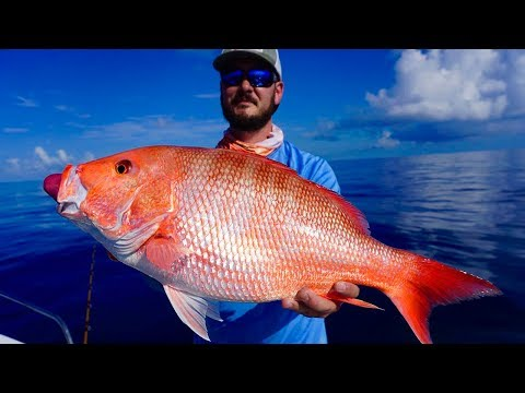 Deep Sea Fishing Battle | HUGE Red Snapper And Red Grouper !