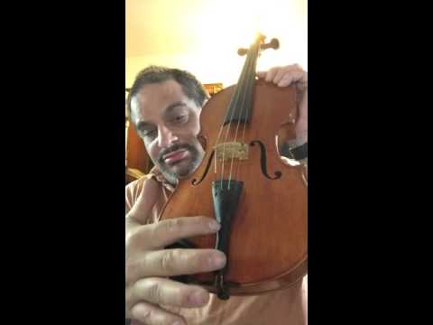 Jacobus Steiner violin demo