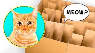 DIY Karton-Labyrinth für Katzen
