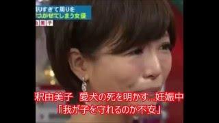 女優・釈由美子が2日、自身のブログで愛犬(チワワ、メス1歳半)が2...