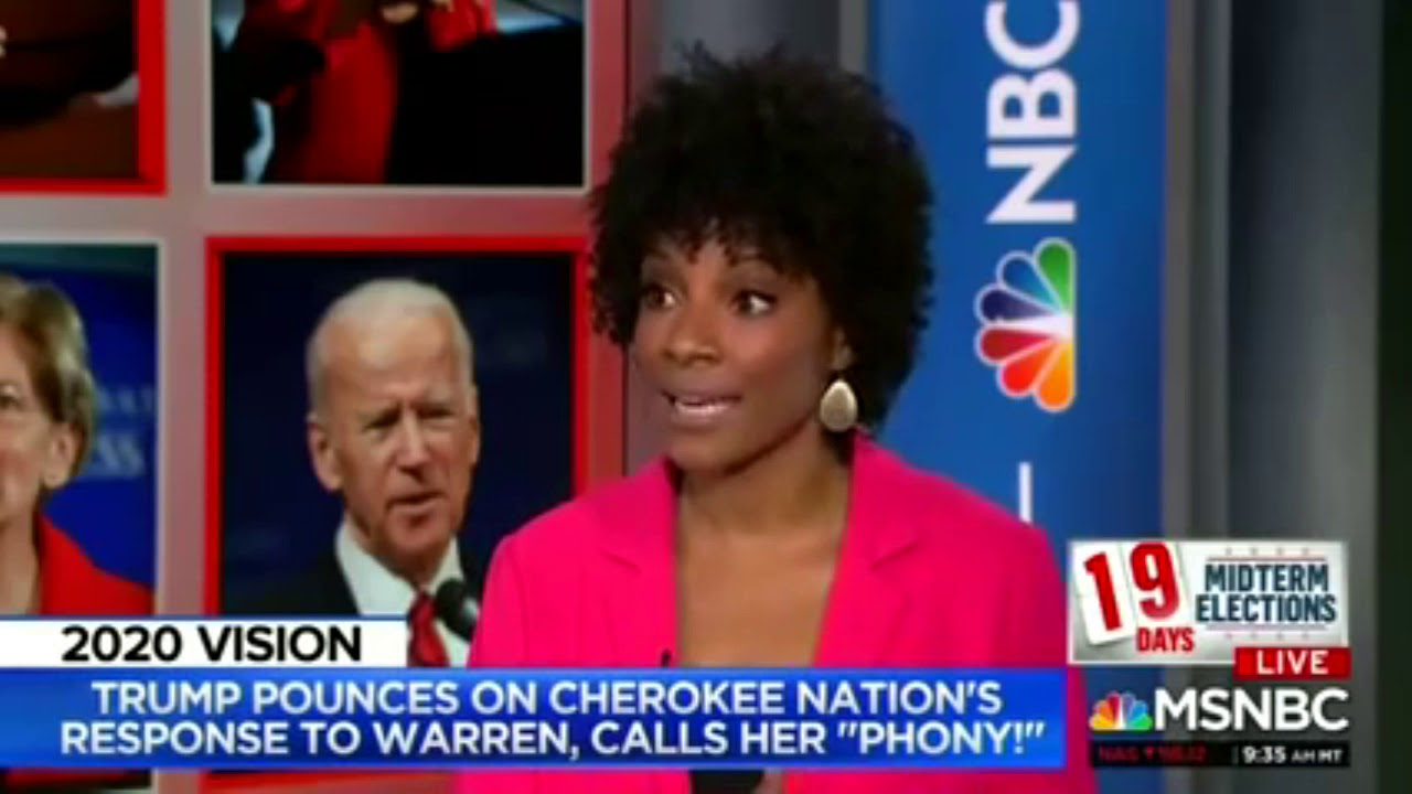 Download Zerlina Maxwell educates the media about Cherokee Freedmen & DNA tests, 2018